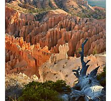 Bryce Canyon Sunrise Colors Photographic Print