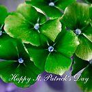 Happy St. Patrick's Day by Donna Adamski