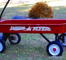 Radio Flyer by Karen Checca