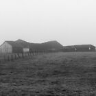 Old barn on a foggy morning  by Sarah Crowe