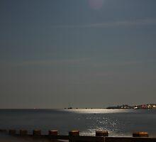 Moonlit Bay by RunnersArtworks