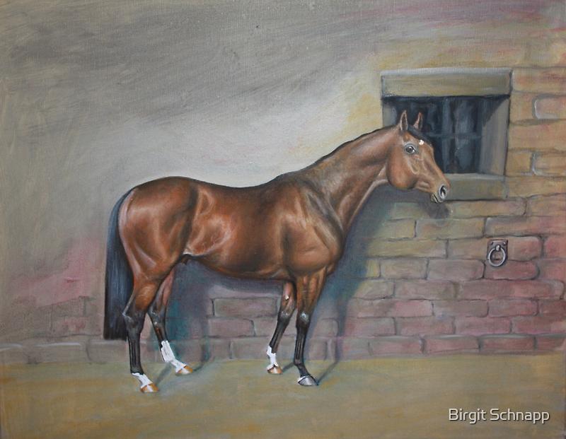 Racehorse by Birgit Schnapp