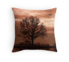 The Sun Goes Down Throw Pillow