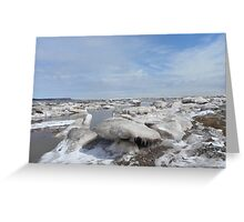 Nature's Ice Sculptures Greeting Card