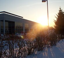 Sundown at the Office by notculpable