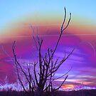 Atomic Sunrise by Cheyenne