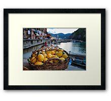Fruit of Cinque Terre Framed Print