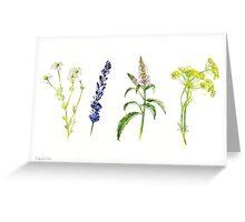 Tea Flowers Greeting Card