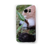 Little Bamboo, Little Panda Samsung Galaxy Case/Skin