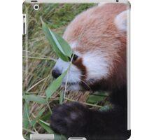 Little Bamboo, Little Panda iPad Case/Skin