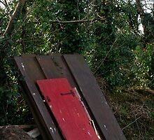 Door to wondererland by Inese