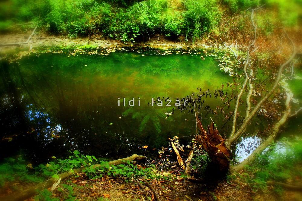 Green Eden by i l d i    l a z a r