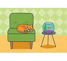 Orange Cat on Green Chair with Goldfish Photographic Print