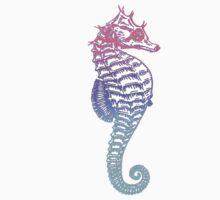 Seahorse by MZawesomechic