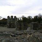 Mellifont Abbey Ruins by Finbarr Reilly
