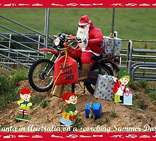 Santa in Australia - Summer Day by Bev Pascoe