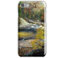 After the Rain at Wilson Creek  iPhone Case/Skin