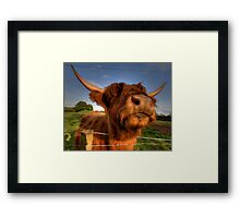 Proud to be Scottish Framed Print
