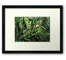 Predator - Jungle Framed Print