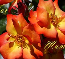 For Mum. by Kristina K
