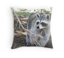 First taste of freedom. © Throw Pillow