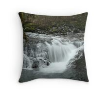 Sweet Creek 7 Throw Pillow