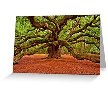Angel Oak Arms Open Wide Greeting Card