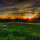 Third Avenue Sunset by Nigel Bangert