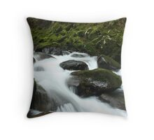 Frothy Falls Throw Pillow