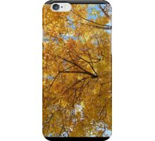 Tree During the Fall- iPhone Case iPhone Case/Skin