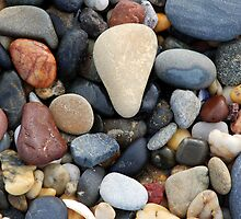 Park Beach Pebbles by MickDee