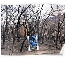 Tourorong Resevoir Park after the fires Poster