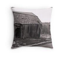 Dilapidated Barn Throw Pillow