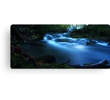 Life's a fast flowing River Canvas Print