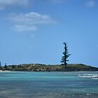 Emily Bay on Norfolk Island by Bev Woodman