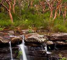 Lifeblood by Geoff  Coleman - Landscapes