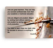 Ants are great teachers Canvas Print