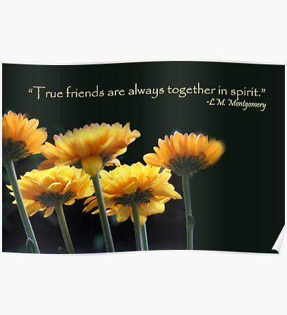 friends together Poster