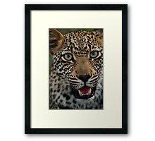 Handsome hunter Framed Print