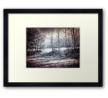 Scenic Beauty Framed Print
