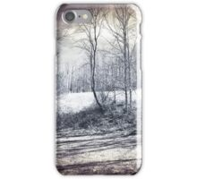 Scenic Beauty iPhone Case/Skin