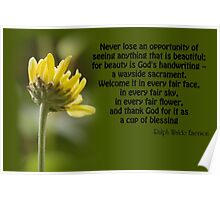 Beauty is God's Handwriting Poster