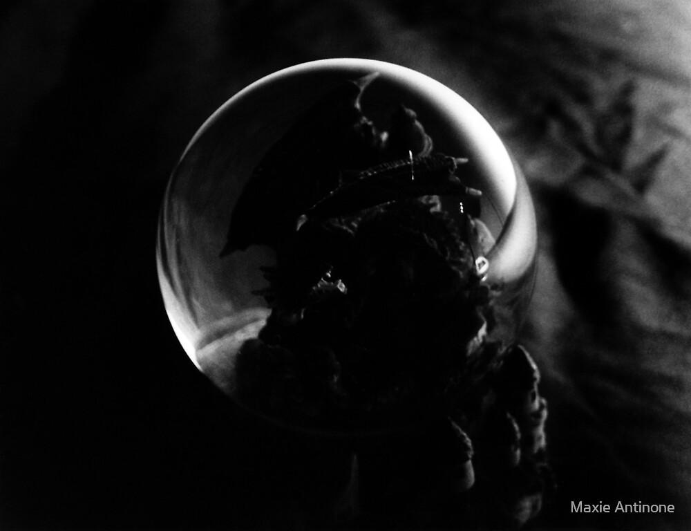 Orange Reflection by Maxie Antinone