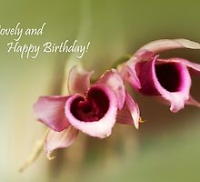 birthday greetings by lensbaby