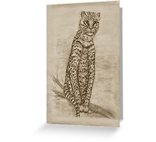 Ocelot Watching Greeting Card