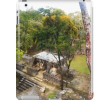 Mayan buildings iPad Case/Skin