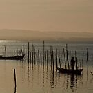 Checking the nets, Parc Natural de l'Albufera, Valencia, Spain by Andrew Jones
