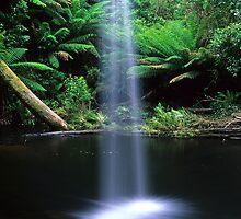 Lower Kalimna Falls by Travis Easton