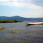Tranquility on the Lake by Laura McNamara