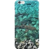 Sharks in the Bahamas  iPhone Case/Skin